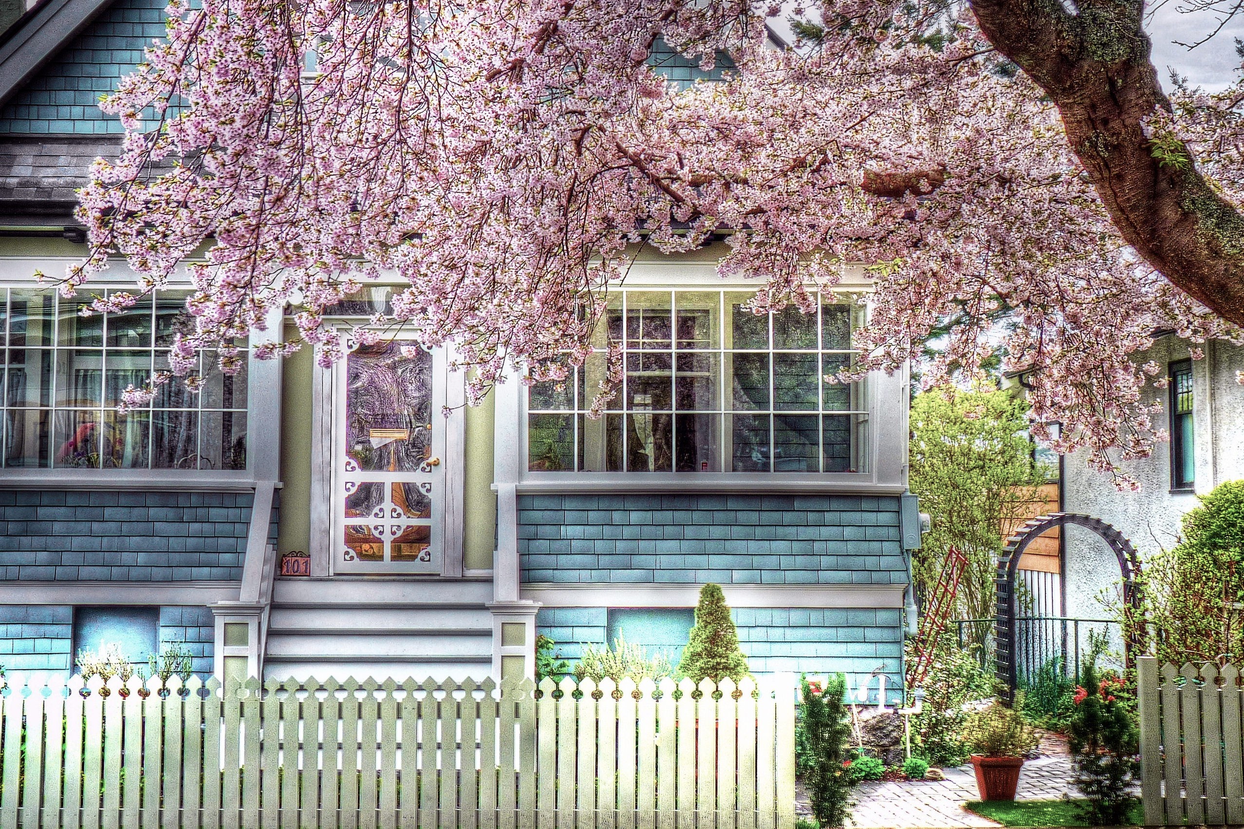 Spring Time Colorful Grass Peaceful Pink Tree Windows Stairs Sunny Colors Nature Vase Trees Architecture Houses Reflection Beauty Beautiful Lovely Pretty House Window Green Home View Fence Desktop Photo