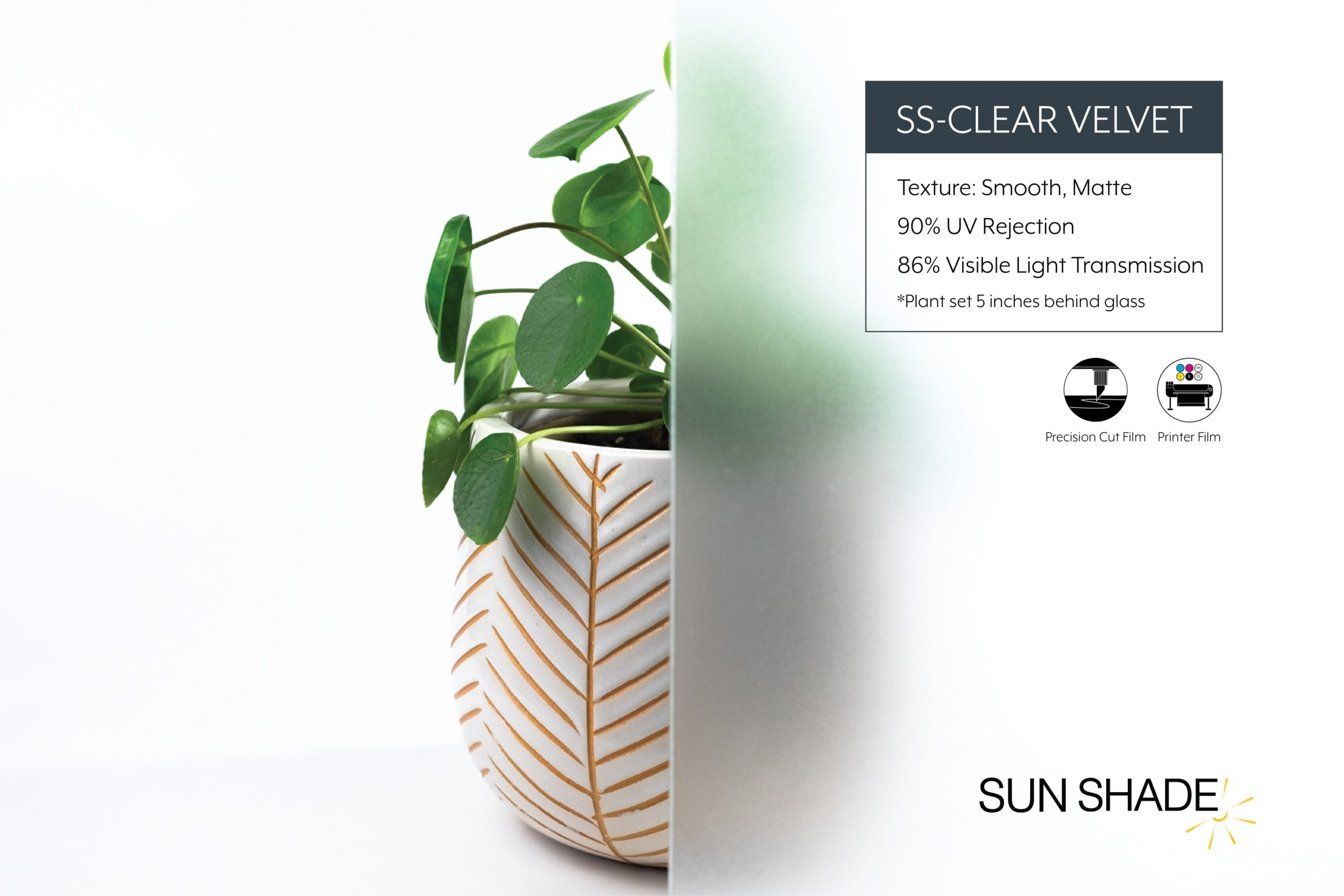 Web version – SS Clear Velvet (PN80)